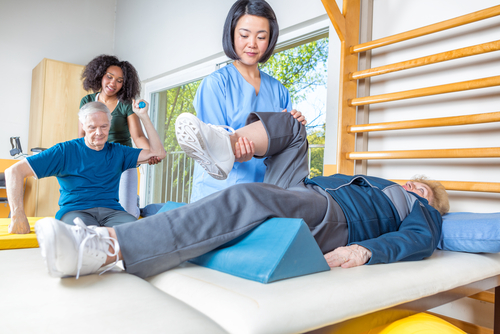 Independent Contractor Physical Therapist
